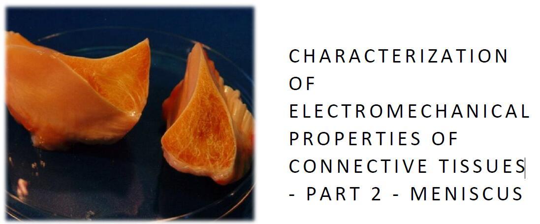 结缔组织机电特性的表征.2部分:弯月面