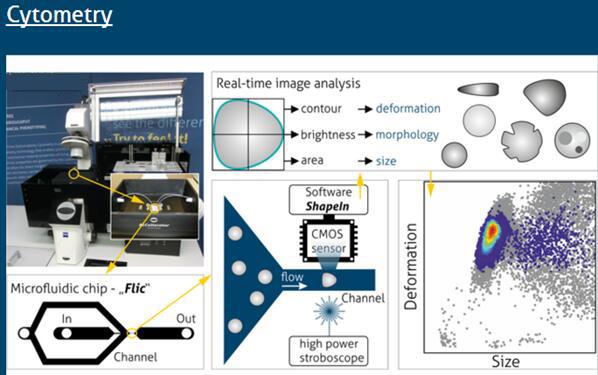 流式单细胞力学特性测试分析系统